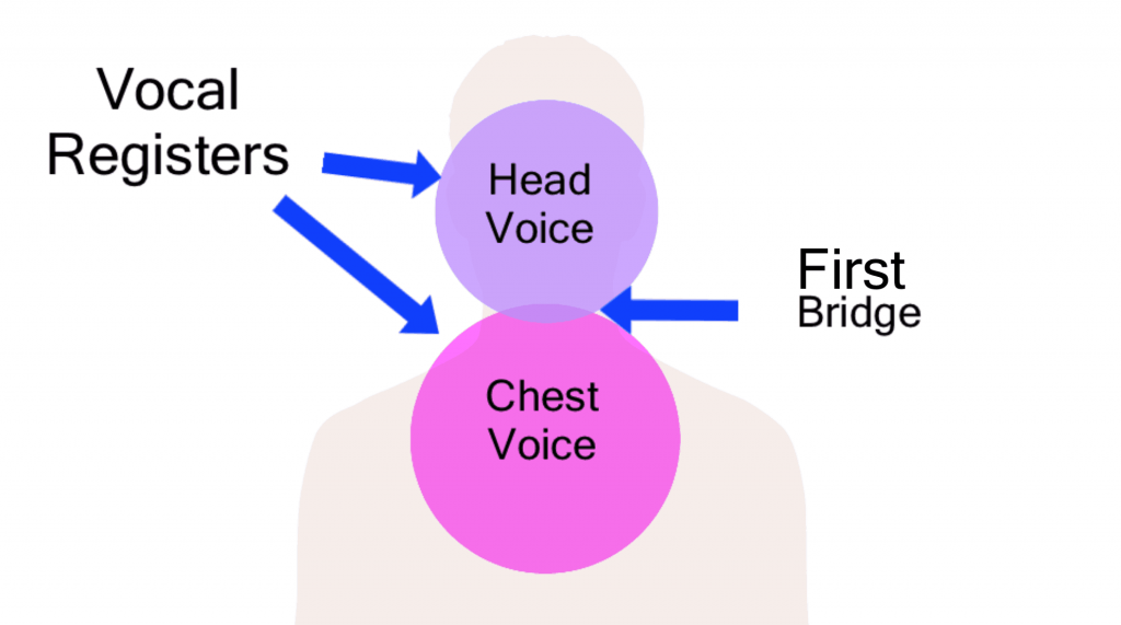 head voice howtosingbetter101.com